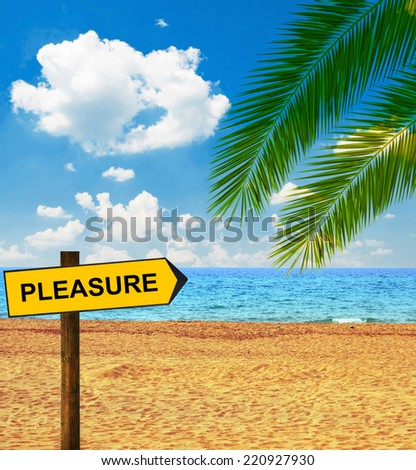 Tropical beach and direction board saying PLEASURE - stock photo