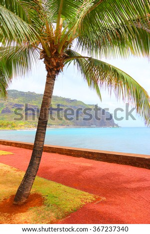 Tropical beach and palm tree, blue sea and sunny sky on a background. Greeting from Reunion Island. - stock photo