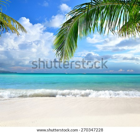 Tropical beach and palm tree leafs background -- Idyllic tropical scenery  - stock photo