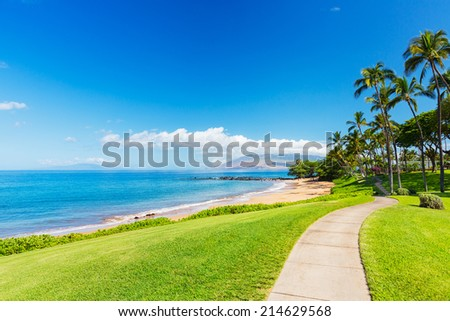 Tropical Beach and Path with Palm Trees  in Hawaii - stock photo