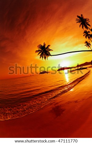 Tropical beach at sunset, Mak island, Thailand