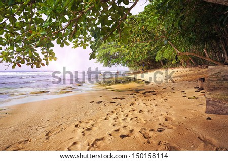 Tropical beach at sunset with lush vegetation, Caribbean, Manzanillo, Costa Rica - stock photo