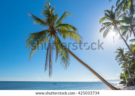 Tropical beach background from Anda beach Bohol island with coconut palms tree leafs, blue sky and turquoise sea water, Travel Vacation - stock photo