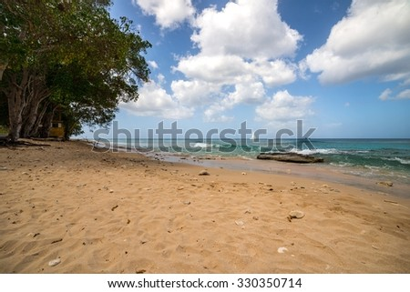 Tropical Beach  - Barbados