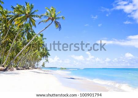 Tropical Beach in Brazil, Carneiros Beach, Pernambuco - stock photo