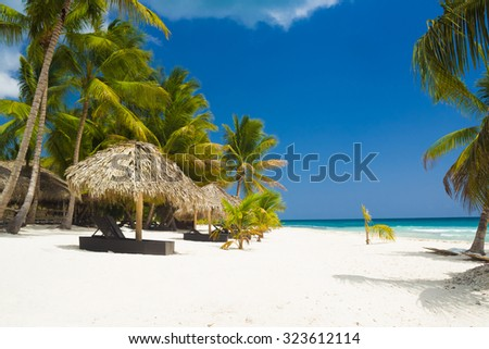 Tropical beach in Caribbean Sea, luxury resort on white sand with palm trees in Saona Island, Dominican Republic