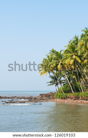Tropical beach in India - vacation background