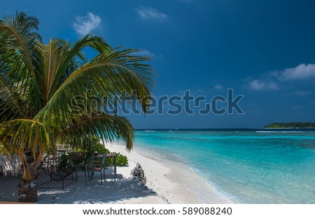 Tropical beach in Maldives. Maldives beach - nature vacation background .Beautiful beach at Maldives