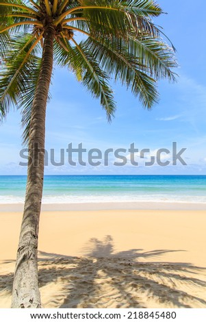 Tropical beach in Phuket, Thailand