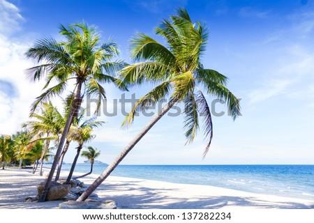 Tropical beach in Thailand - stock photo