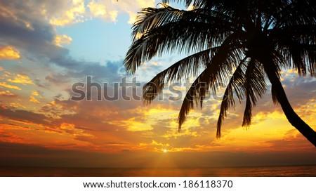 Tropical beach. Koh Chang, Thailand - stock photo