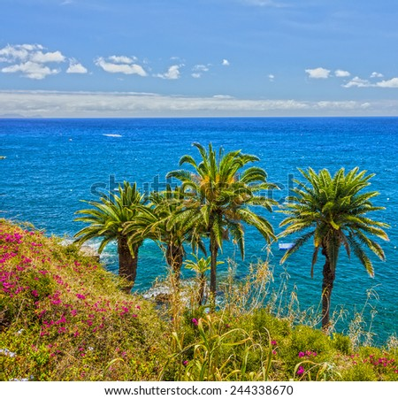 Tropical beach, Madeira, Portugal - stock photo