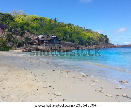 tropical beach - nature background