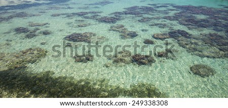 Tropical beach near the Great Barrier Reef in Cairns, Australia. - stock photo