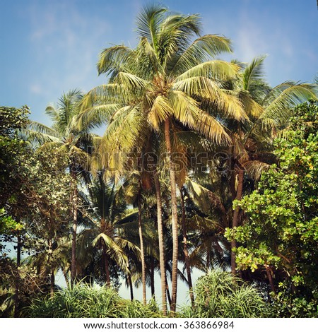 Tropical beach of a summer day background - stock photo