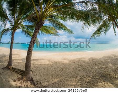 Tropical beach of Koh Samui island in Thailand - stock photo