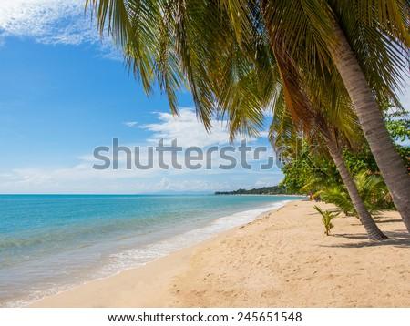 Tropical beach of Lamai in Koh Samui island in Thailand - stock photo