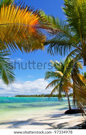 Tropical beach on caribbean sea, paradise - stock photo