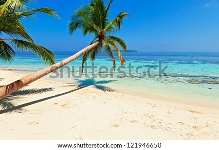 Tropical beach on the island Vilamendhoo in the Indian Ocean, Maldives - stock photo