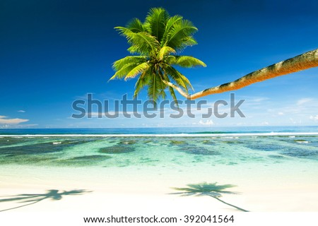 Tropical Beach Resort Beauty In Nature Concept - stock photo