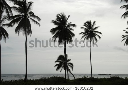 tropical beach scene in very bad weather conditions