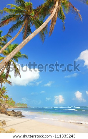 Tropical beach. Sri Lanka. MANY MORE PHOTOS FROM SRI LANKA IN MY PORTFOLIO.