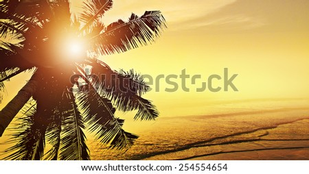 Tropical beach sunrise (sunset) with coconut palm tree silhouettes - stock photo
