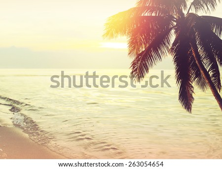 Tropical beach sunset background with palm tree silhouette. Vintage effect. - stock photo