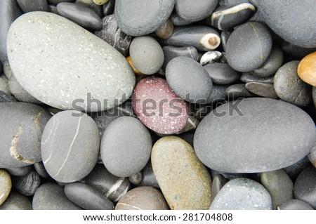 Tropical beach wet pebbles  - stock photo