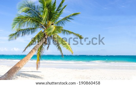 Tropical beach - wide angle view - stock photo