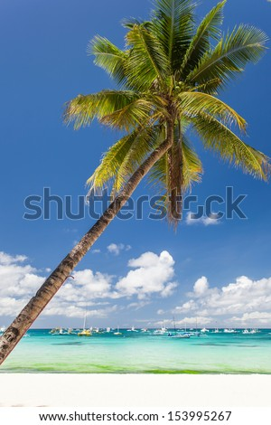Tropical beach with beautiful palm and white sand, Boracay Island