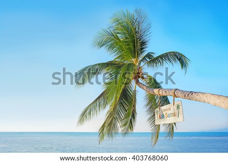 Tropical beach with coconut palm  jutting out into the sea. Koh Samui (Samui Island), Thailand