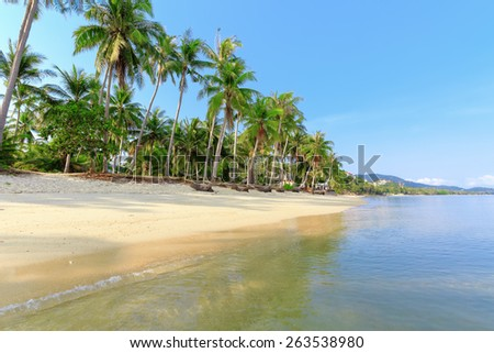 Tropical beach with coconut palm trees and white sand - stock photo