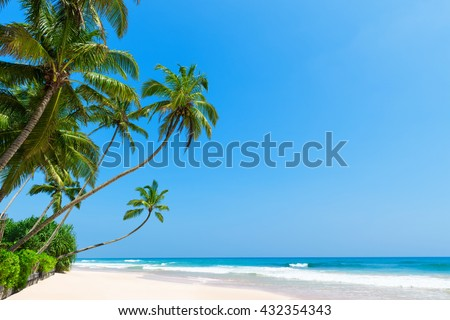 Tropical beach with coconut palm trees. Idyllic clean ocean white sand and clear blue sky and sunny summer day