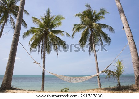 tropical beach with coconut palm trees. Koh Samui, Thailand - stock photo