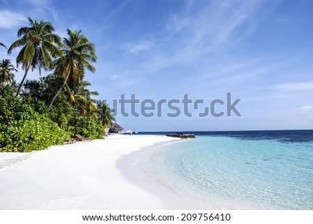 Tropical Beach with Coconut Palm Trees, panoramic view  copy space - stock photo