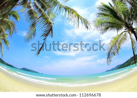 Tropical beach with coconut palms, white sand and turquoise water. - stock photo
