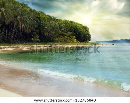 Tropical beach with coconuts trees in, Zapatillas islands, Bocas del Toro, caribbean sea, Panama - stock photo