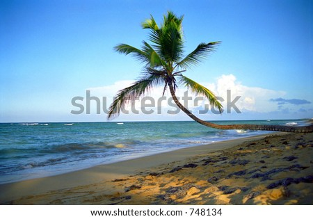 Tropical beach with dramatic rays of light. - stock photo