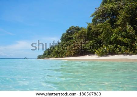 Tropical beach with lush vegetation, taken from water surface, Bocas del Toro, Caribbean sea, Zapatillas islands, Panama - stock photo