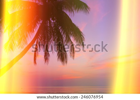 Tropical beach with palm tree at sunset, vintage stylized with light leaks