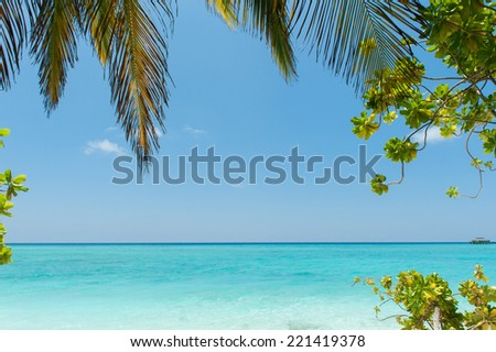 Tropical beach with palm tree leaf, idyllic tropical scenery, Maldives islands - stock photo