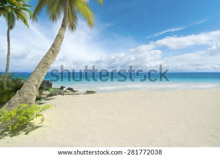 Tropical beach with palm trees and a lot of copy space - stock photo