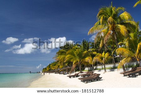 Tropical beach with palm trees and sun beds, Mauritius - stock photo