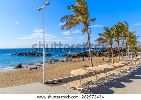 Tropical beach with palm trees and sunbeds in Puerto del Carmen, Lanzarote, Canary Islands, Spain - stock photo