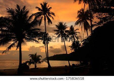 Tropical beach with palm trees at sunrise, Wua Talab island, Ang Thong National Marine Park, Thailand
