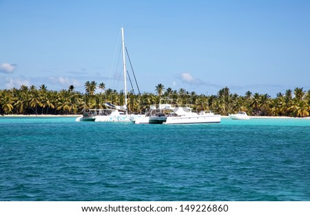 Tropical beach with palms and ocean and ships - stock photo