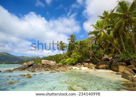 Tropical beach with palms and rocks, Mahe Island, Seychelles - stock photo