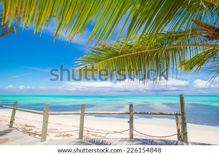 Tropical beach with palms and white sand on Caribbean - stock photo