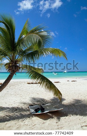 Tropical beach with palms, paradise - stock photo